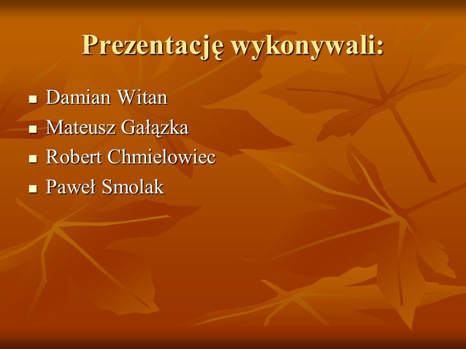 Prezentację wykonywali: Damian Witan Damian Witan Mateusz Gałązka Mateusz Gałązka Robert Chmielowiec Robert Chmielowiec Paweł Smolak Paweł Smolak