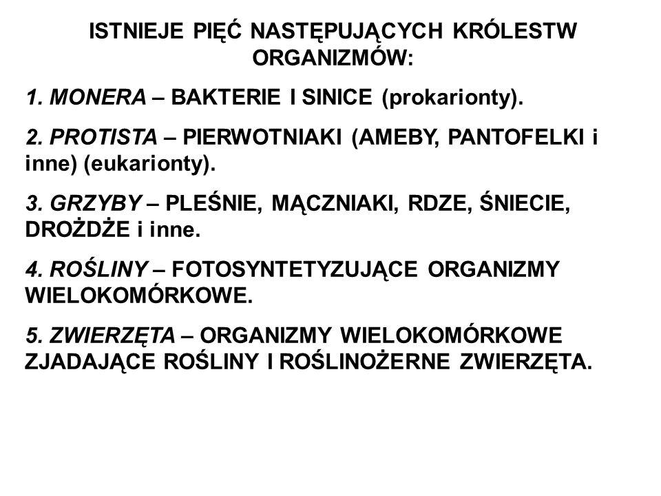 ISTNIEJE PIĘĆ NASTĘPUJĄCYCH KRÓLESTW ORGANIZMÓW: 1. MONERA – BAKTERIE I SINICE (prokarionty). 2. PROTISTA – PIERWOTNIAKI (AMEBY, PANTOFELKI i inne) (e