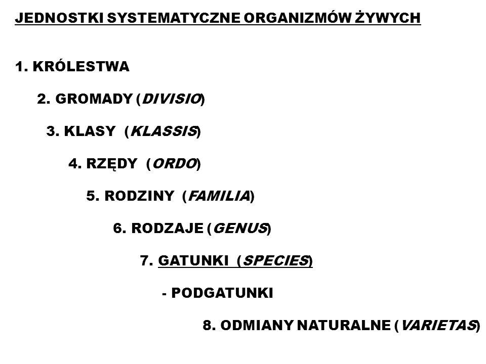 JEDNOSTKI SYSTEMATYCZNE ORGANIZMÓW ŻYWYCH 1. KRÓLESTWA 2. GROMADY (DIVISIO) 3. KLASY (KLASSIS) 4. RZĘDY (ORDO) 5. RODZINY (FAMILIA) 6. RODZAJE (GENUS)