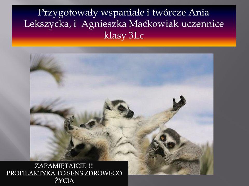 Przygotowały wspaniałe i twórcze Ania Lekszycka, i Agnieszka Maćkowiak uczennice klasy 3Lc ZAPAMIĘTAJCIE !!! PROFILAKTYKA TO SENS ZDROWEGO ŻYCIA
