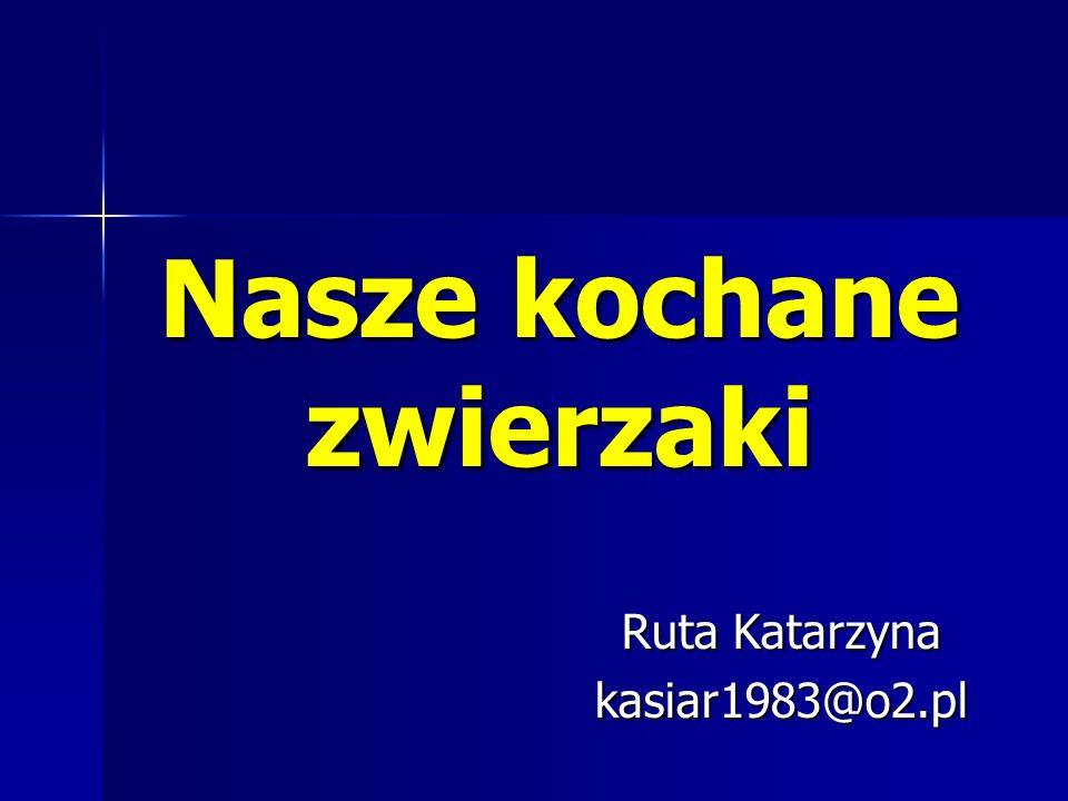Nasze kochane zwierzaki Ruta Katarzyna kasiar1983@o2.pl