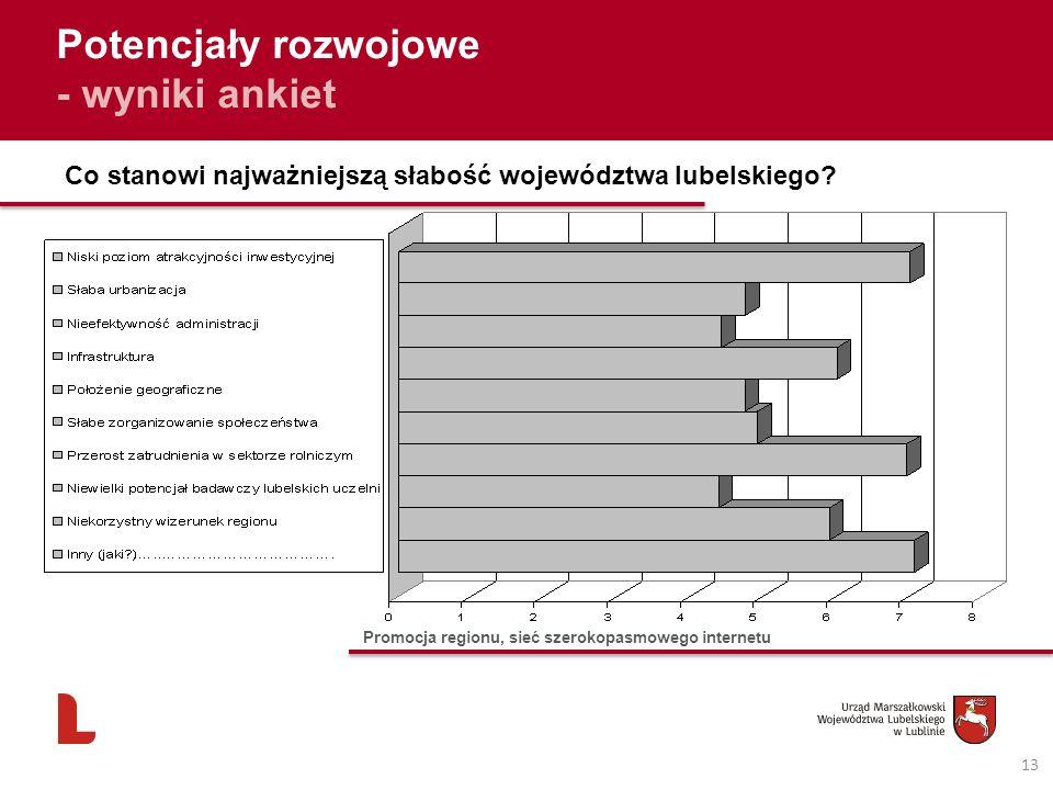 13 Potencjały rozwojowe - wyniki ankiet Co stanowi najważniejszą słabość województwa lubelskiego? Promocja regionu, sieć szerokopasmowego internetu