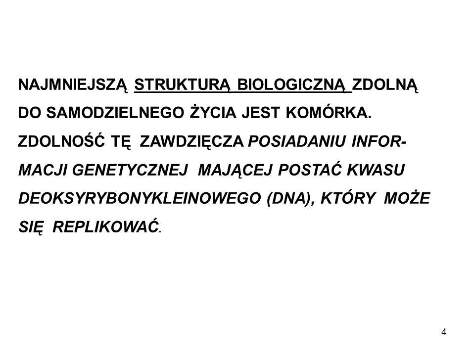 SCHEMAT BUDOWY KOMÓRKI PROKARIO- TYCZNEJ NA PRZYKŁA- DZIE BAKTERII.