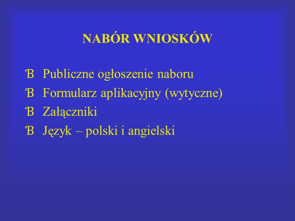NABÓR WNIOSKÓW Ɓ Publiczne ogłoszenie naboru Ɓ Formularz aplikacyjny (wytyczne) Ɓ Załączniki Ɓ Język – polski i angielski
