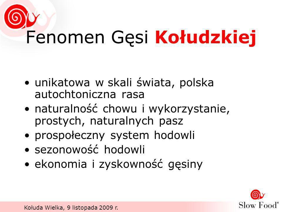 Kołuda Wielka, 9 listopada 2009 r. Fenomen Gęsi Kołudzkiej unikatowa w skali świata, polska autochtoniczna rasa naturalność chowu i wykorzystanie, pro