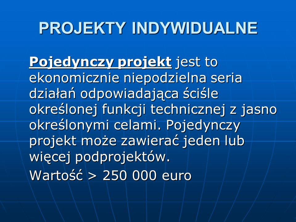 PROJEKTY INDYWIDUALNE Pojedynczy projekt jest to ekonomicznie niepodzielna seria działań odpowiadająca ściśle określonej funkcji technicznej z jasno określonymi celami.
