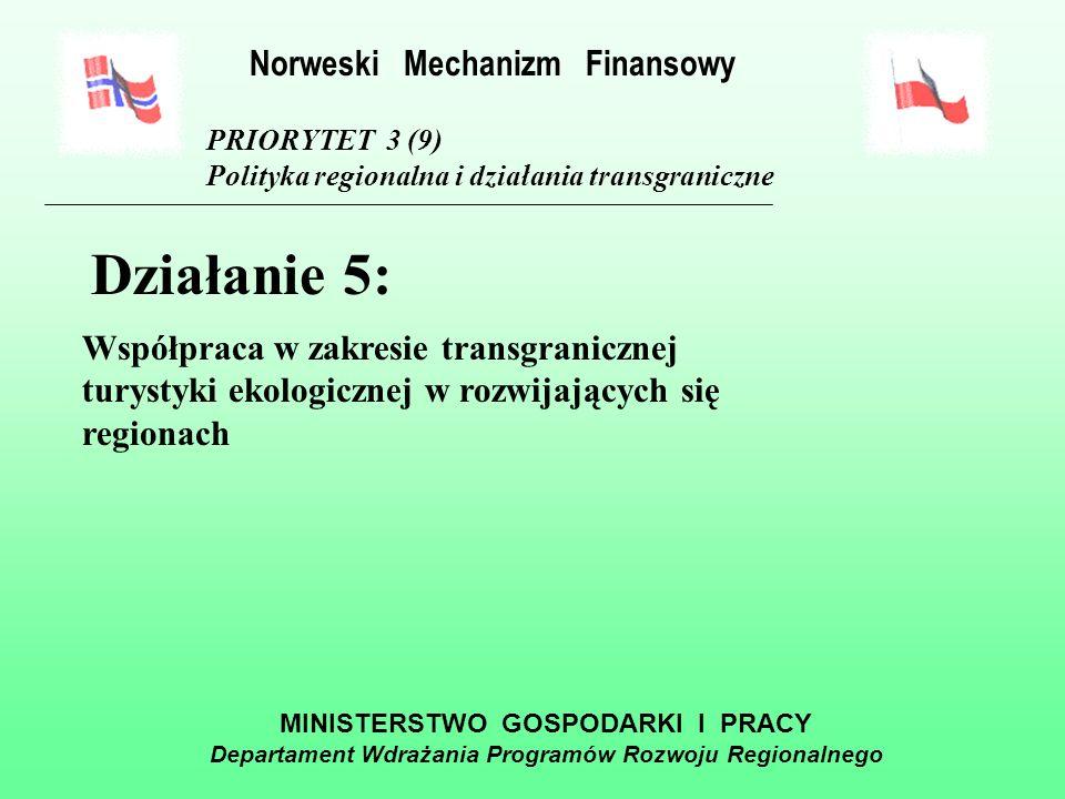 MINISTERSTWO GOSPODARKI I PRACY Departament Wdrażania Programów Rozwoju Regionalnego PRIORYTET 3 (9) Polityka regionalna i działania transgraniczne Działanie 4: Zapewnienie rozwoju systemu komunikacji i wymiany informacji Norweski Mechanizm Finansowy