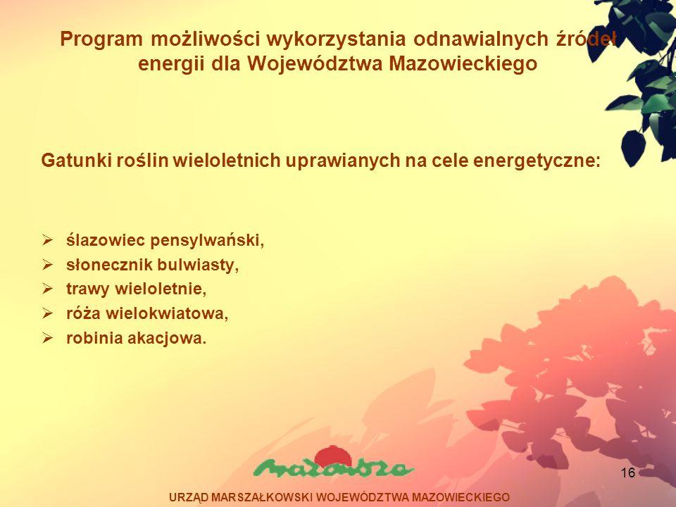 16 Program możliwości wykorzystania odnawialnych źródeł energii dla Województwa Mazowieckiego Gatunki roślin wieloletnich uprawianych na cele energety