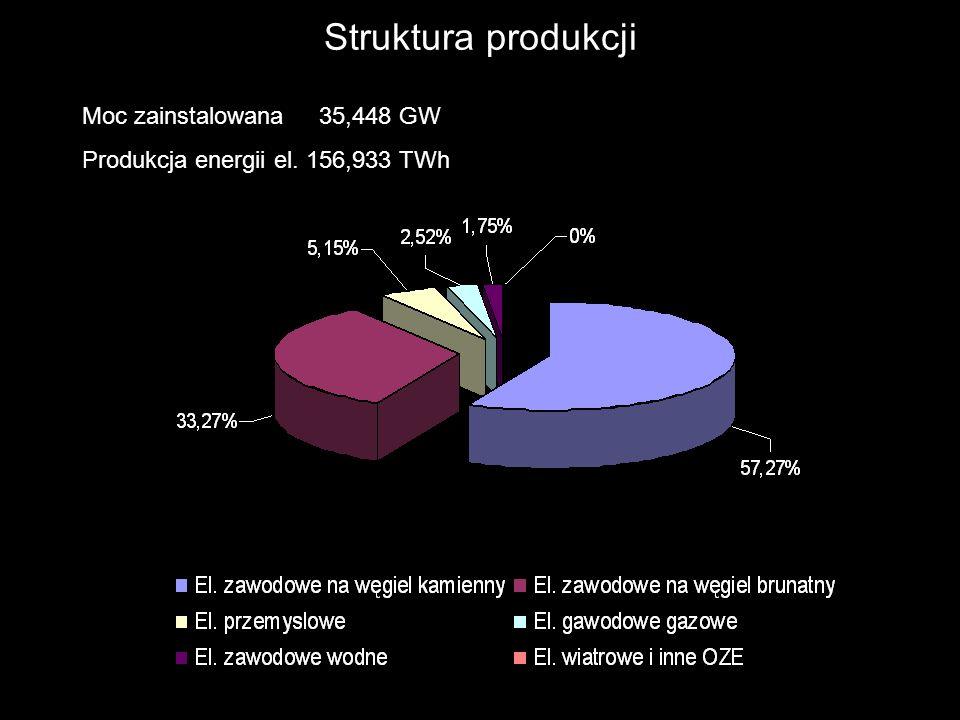 Produkcja energii elektrycznej w roku 2006 160.848 GWh