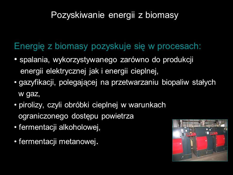 Pozyskiwanie energii z biomasy Energię z biomasy pozyskuje się w procesach: spalania, wykorzystywanego zarówno do produkcji energii elektrycznej jak i energii cieplnej, gazyfikacji, polegającej na przetwarzaniu biopaliw stałych w gaz, pirolizy, czyli obróbki cieplnej w warunkach ograniczonego dostępu powietrza fermentacji alkoholowej, fermentacji metanowej.