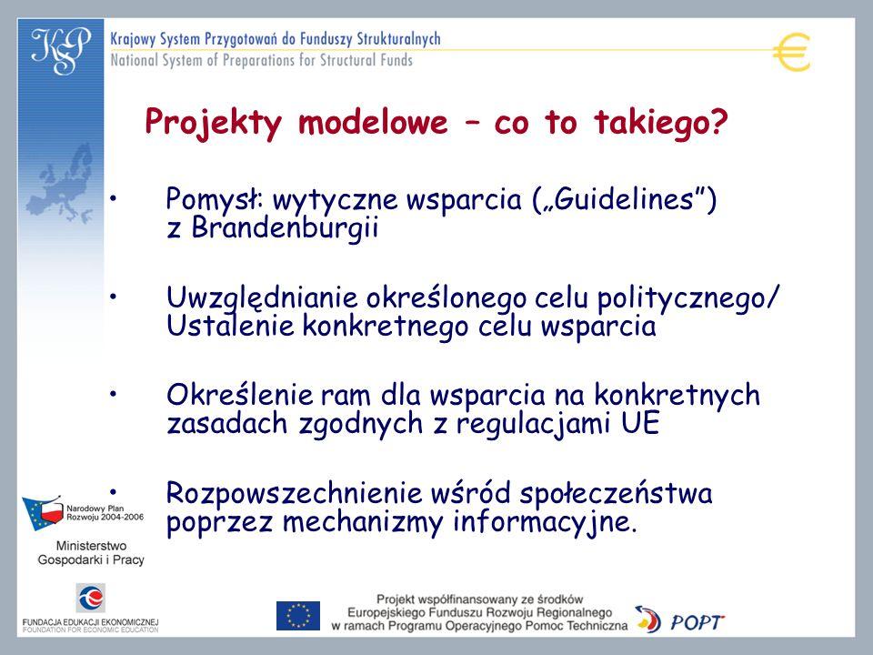 Projekty modelowe – co to takiego? Pomysł: wytyczne wsparcia (Guidelines) z Brandenburgii Uwzględnianie określonego celu politycznego/ Ustalenie konkr