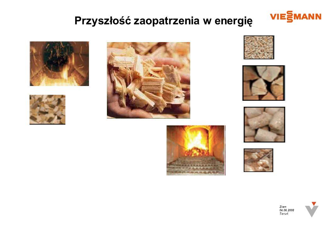 Ziem 04.06.2008 Toruń Przyszłość zaopatrzenia w energię