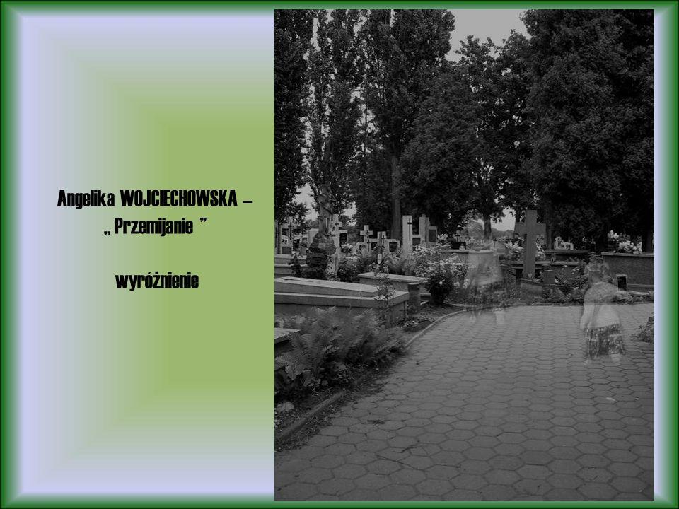 Angelika WOJCIECHOWSKA – Przemijanie wyróżnienie