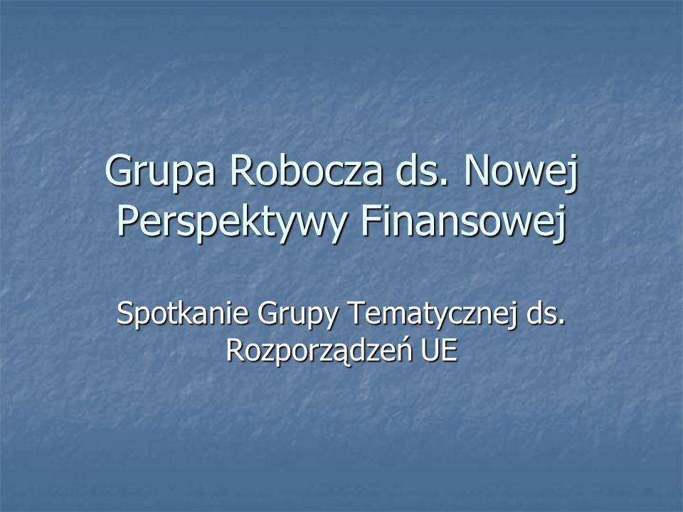 Grupa Robocza ds. Nowej Perspektywy Finansowej Spotkanie Grupy Tematycznej ds. Rozporządzeń UE