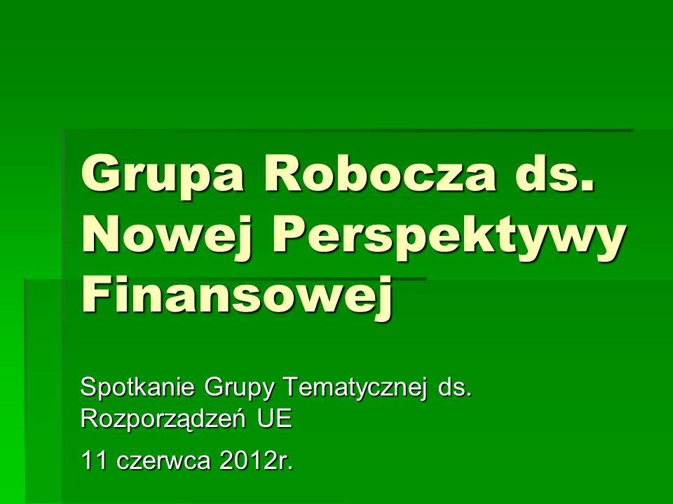 Grupa Robocza ds. Nowej Perspektywy Finansowej Spotkanie Grupy Tematycznej ds.
