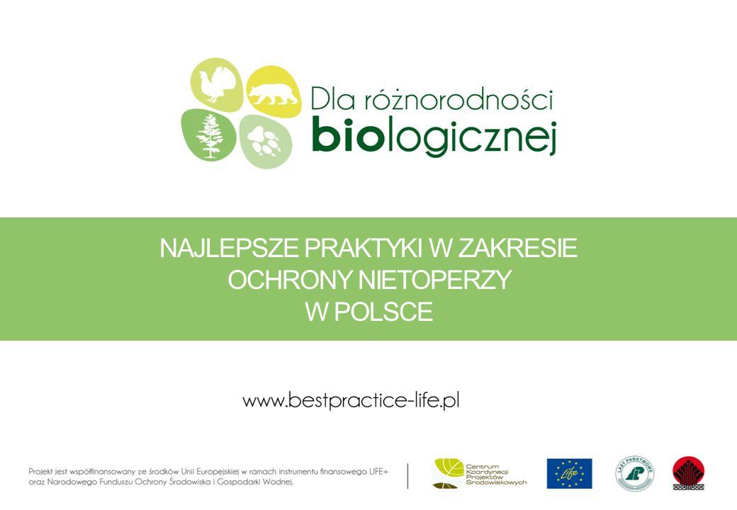Ochrona różnorodności biologicznej na obszarach leśnych, w tym w ramach sieci Natura 2000 – promocja najlepszych praktyk Okres realizacji projektu 1 stycznia 2012 – 31 grudnia 2014 Całkowity budżet projektu to 2 093 790 euro ŹRÓDŁOPROCENT (%) WARTOŚĆ W EURO WARTOŚĆ W PLN KOMISJA EUROPEJSKA 501.046.8954.292.270 NFOŚIGW39821.8953.369.770 CKPŚ-DGLP11225.00922.499