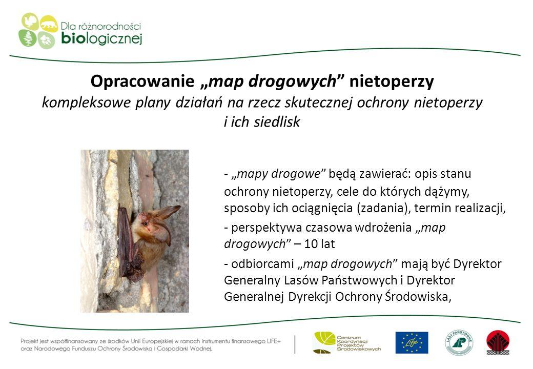 Opracowanie map drogowych nietoperzy kompleksowe plany działań na rzecz skutecznej ochrony nietoperzy i ich siedlisk - mapy drogowe będą zawierać: opi