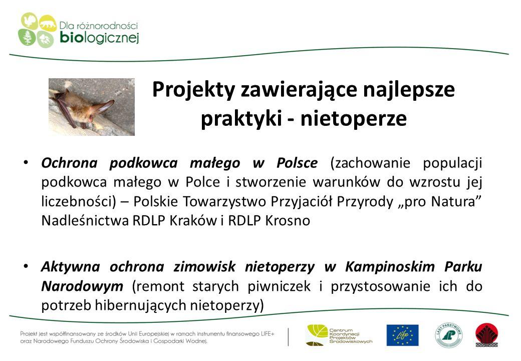 Projekty zawierające najlepsze praktyki - nietoperze Ochrona podkowca małego w Polsce (zachowanie populacji podkowca małego w Polce i stworzenie warun