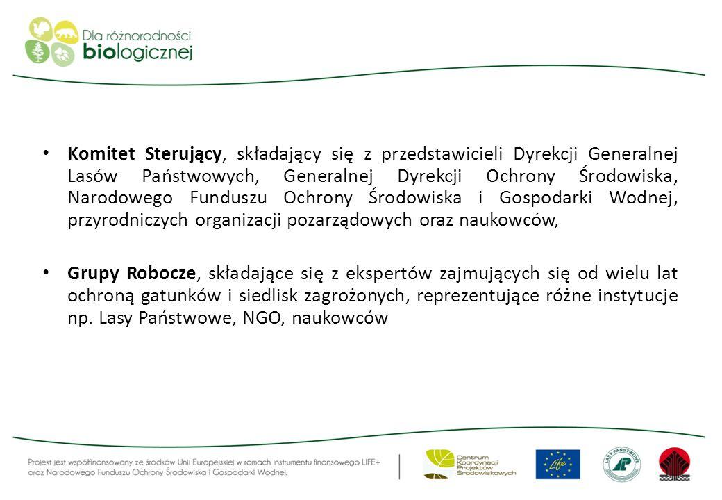 Komitet Sterujący, składający się z przedstawicieli Dyrekcji Generalnej Lasów Państwowych, Generalnej Dyrekcji Ochrony Środowiska, Narodowego Funduszu