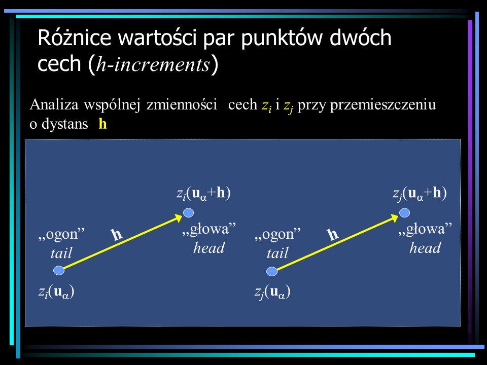 Różnice wartości par punktów dwóch cech ( h-increments ) z i (u ) z i (u +h) ogon tail głowa head h z j (u ) z j (u +h) ogon tail głowa head h Analiza