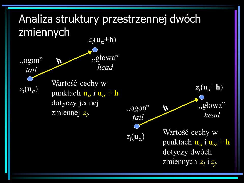 Analiza struktury przestrzennej dwóch zmiennych z i (u ) z i (u +h) ogon tail głowa head h Wartość cechy w punktach u i u + h dotyczy jednej zmiennej