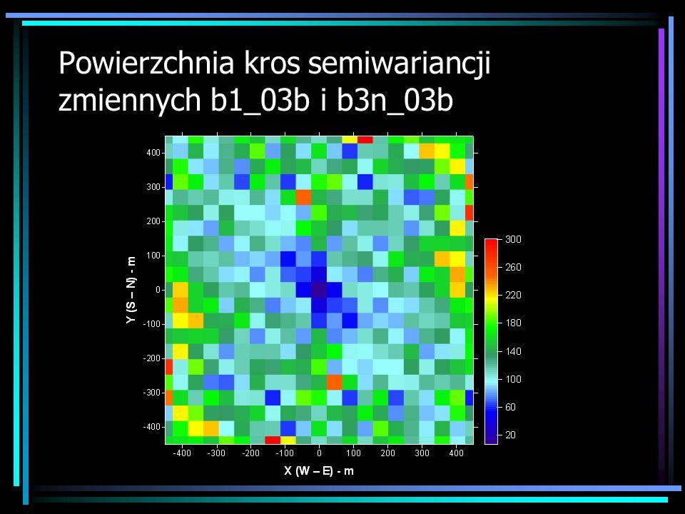 Powierzchnia kros semiwariancji zmiennych b1_03b i b3n_03b