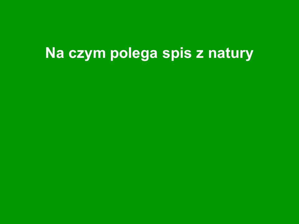 Na czym polega spis z natury