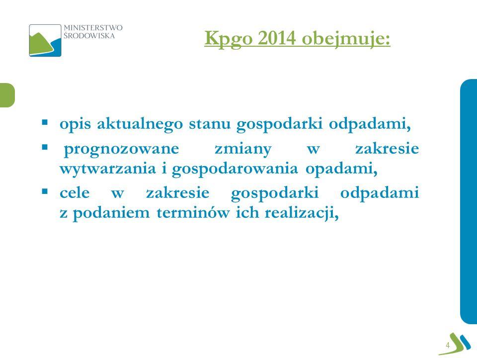 Kpgo 2014 obejmuje: zadania, których realizacja zapewni poprawę sytuacji w zakresie gospodarowania odpadami, rodzaj przedsięwzięć i harmonogram ich realizacji, instrumenty finansowe służące realizacji celów w zakresie gospodarki odpadami, system monitoringu i sposób oceny realizacji celów w zakresie gospodarki odpadami.
