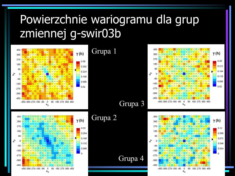 Powierzchnie wariogramu dla grup zmiennej g-swir03b Grupa 1 Grupa 2 Grupa 3 Grupa 4