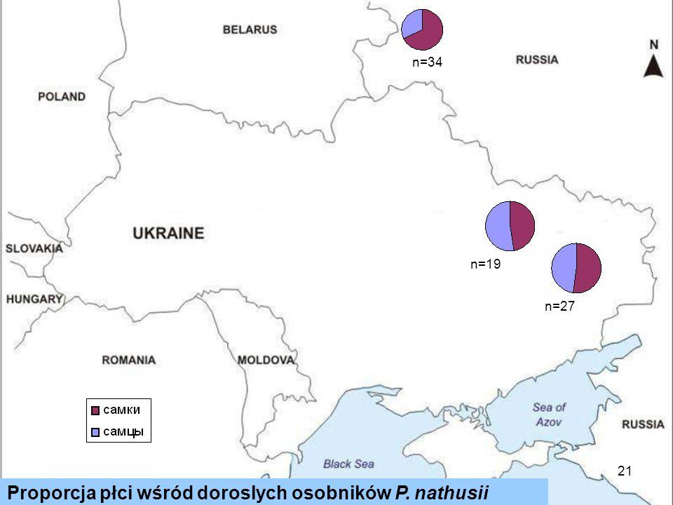 21 Proporcja płci wśród doroslych osobników P. nathusii n=34 n=27 n=19