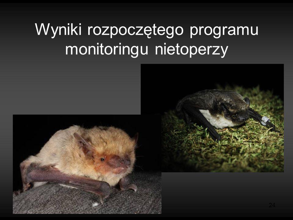 24 Wyniki rozpoczętego programu monitoringu nietoperzy