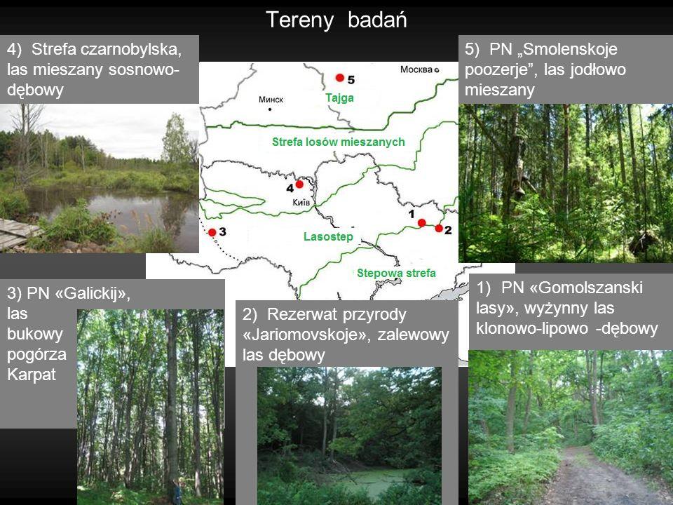 4 Tereny badań 2) Rezerwat przyrody «Jariomovskoje», zalewowy las dębowy 3) PN «Galickij», las bukowy pogórza Karpat 4) Strefa czarnobylska, las miesz