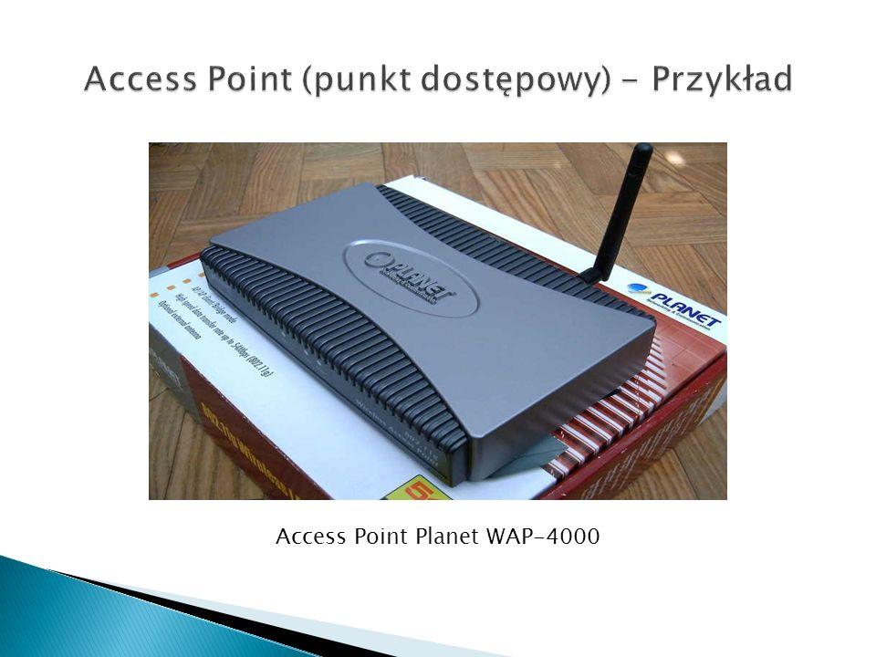 Access Point Planet WAP-4000