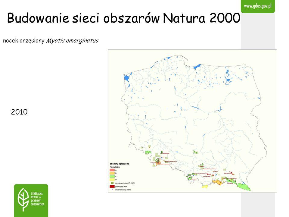 Budowanie sieci obszarów Natura 2000 nocek orzęsiony Myotis emarginatus 2010