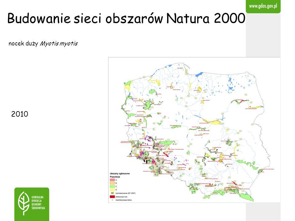 Budowanie sieci obszarów Natura 2000 2010 nocek duży Myotis myotis