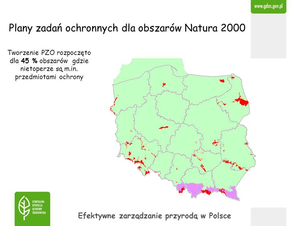 Plany zadań ochronnych dla obszarów Natura 2000 Efektywne zarządzanie przyrodą w Polsce Tworzenie PZO rozpoczęto dla 45 % obszarów gdzie nietoperze są