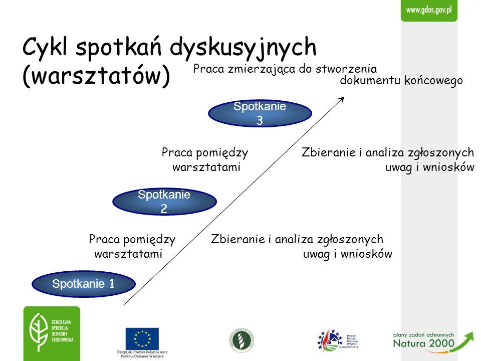 Cykl spotkań dyskusyjnych (warsztatów) Praca zmierzająca do stworzenia dokumentu końcowego Praca pomiędzy Zbieranie i analiza zgłoszonych warsztatami