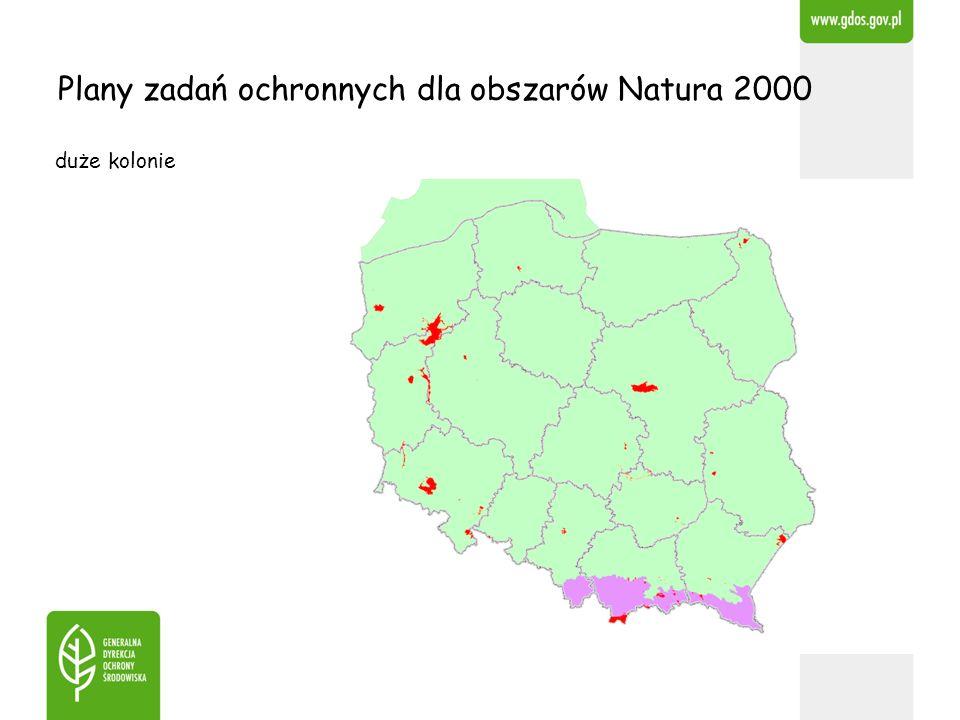 Plany zadań ochronnych dla obszarów Natura 2000 duże kolonie