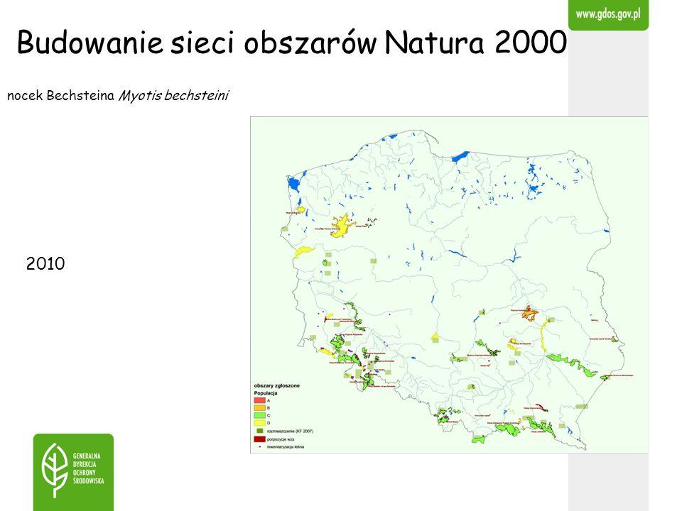 Budowanie sieci obszarów Natura 2000 nocek Bechsteina Myotis bechsteini 2010