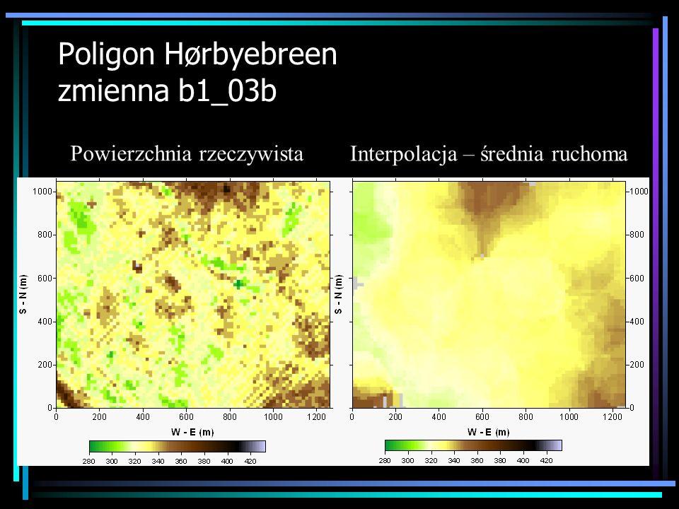 Poligon Hørbyebreen zmienna b1_03b Powierzchnia rzeczywista Interpolacja – średnia ruchoma