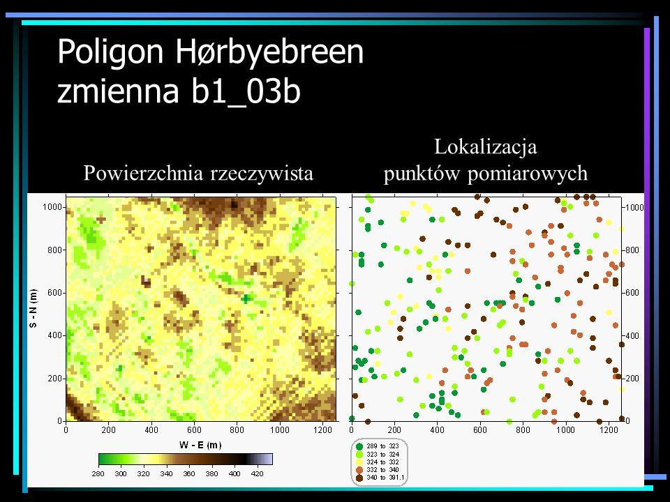Poligon Hørbyebreen zmienna b1_03b Powierzchnia rzeczywista Lokalizacja punktów pomiarowych
