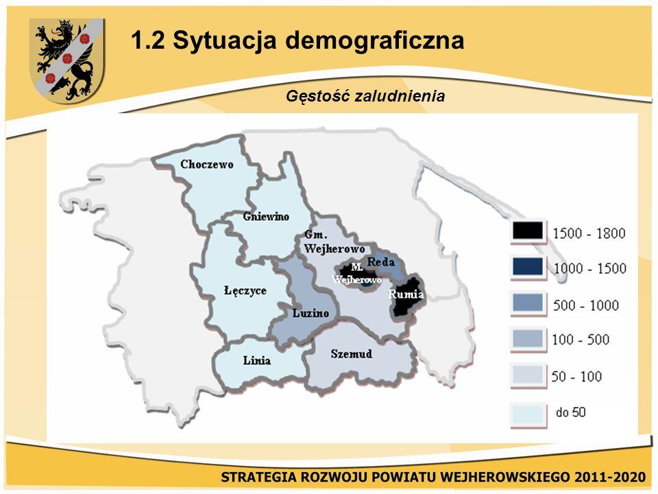 1.2 Sytuacja demograficzna Struktura wieku ludności Powiat Wejherowski charakteryzuje korzystniejsza w porównaniu z województwem struktura wieku ludności (2009 r., wg danych GUS): -wyższy udział ludności w wieku przedprodukcyjnym – 23,5% (województwo 20,3%), -wyższy udział najmłodszych grup wiekowych (0-19 lat) – 26,7% (województwo 23,2%), liczebność grupy wiekowej 65 lat i więcej wynosi 9,7% (województwo 12,2%), -zbliżony udział grup w wieku zdolności do pracy – 64,5% (województwo 64,6%).