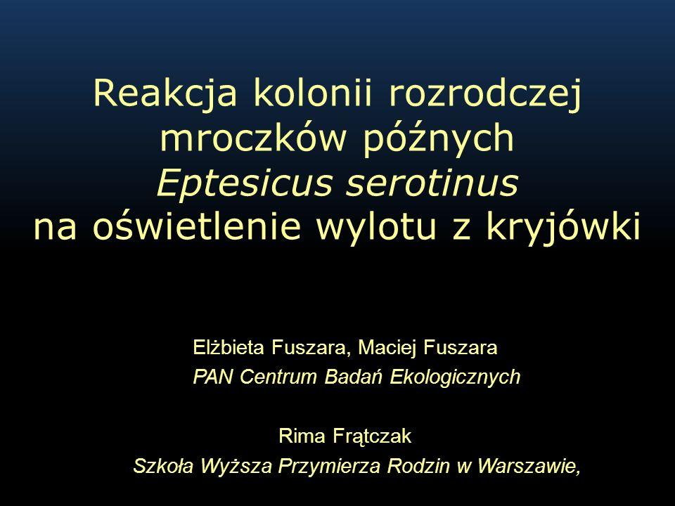 Elżbieta Fuszara, Maciej Fuszara PAN Centrum Badań Ekologicznych Rima Frątczak Szkoła Wyższa Przymierza Rodzin w Warszawie, Reakcja kolonii rozrodczej