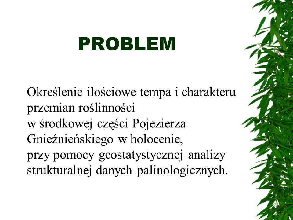 PROBLEM Określenie ilościowe tempa i charakteru przemian roślinności w środkowej części Pojezierza Gnieźnieńskiego w holocenie, przy pomocy geostatyst