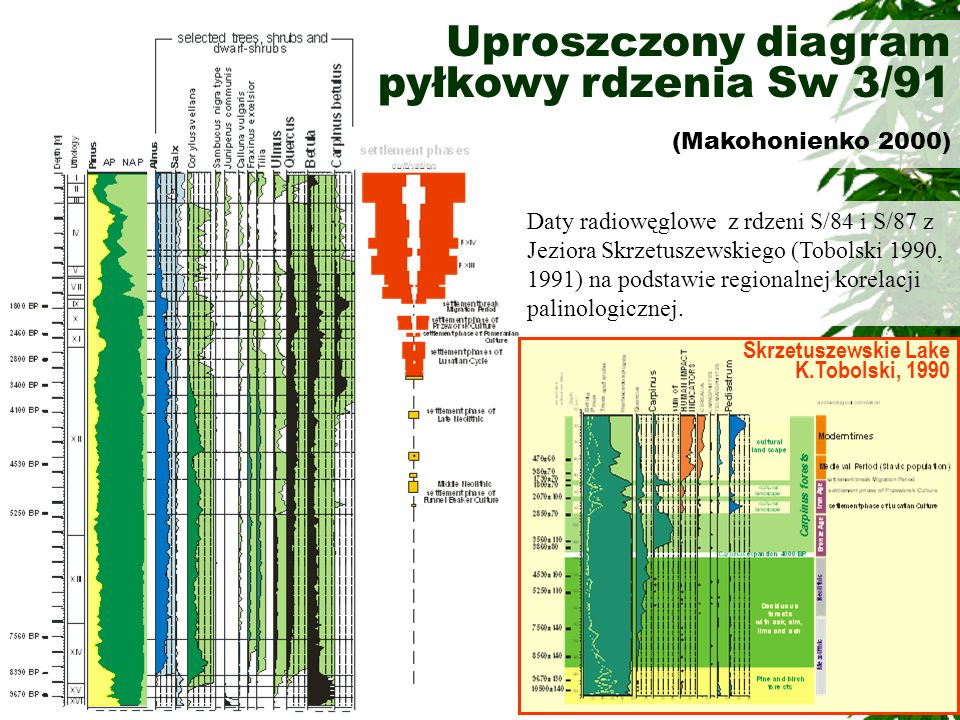Uproszczony diagram pyłkowy rdzenia Sw 3/91 (Makohonienko 2000) Skrzetuszewskie Lake K.Tobolski, 1990 Daty radiowęglowe z rdzeni S/84 i S/87 z Jeziora