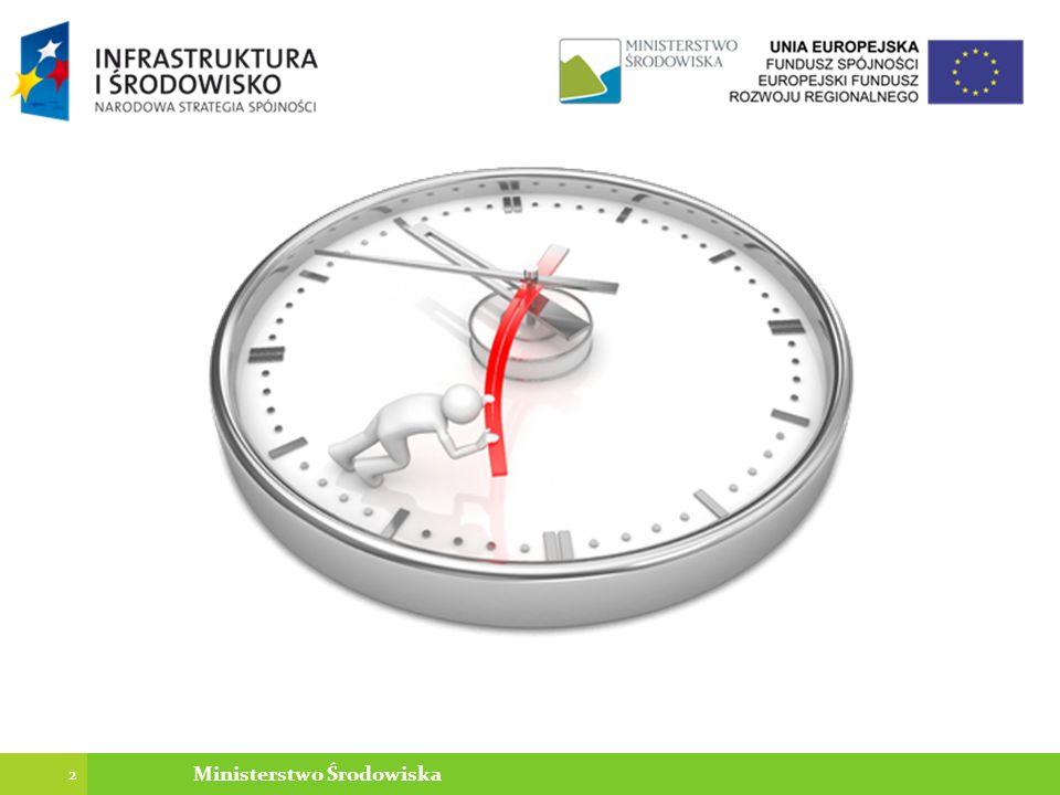 Podstawowe dane Umowa nie w oparciu o FIDIC Umowa o dofinansowanie w ramach działania Podstawowe Usługi dla Gospodarki i Ludności Wiejskiej objętego PROW na lata 2007-2013 Podział na źródła finansowania –75 % wydatków kwalifikowalnych - Europejski Fundusz Rolny –25 % wydatków kwalifikowalnych - Środki własne przedsiębiorstwa Wartość robót – ok.