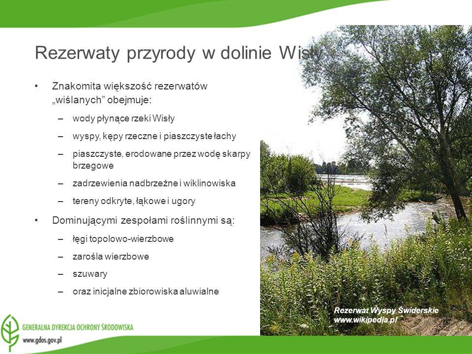 www.gdos.gov.pl Rezerwat Wyspy Świderskie www.wikipedia.pl Rezerwaty przyrody w dolinie Wisły Znakomita większość rezerwatów wiślanych obejmuje: –wody