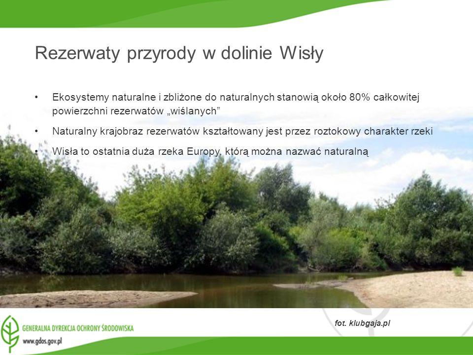 www.gdos.gov.pl fot. klubgaja.pl Rezerwaty przyrody w dolinie Wisły Ekosystemy naturalne i zbliżone do naturalnych stanowią około 80% całkowitej powie
