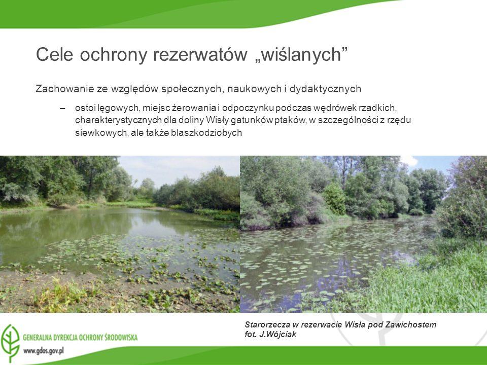 www.gdos.gov.pl Cele ochrony rezerwatów wiślanych Zachowanie ze względów społecznych, naukowych i dydaktycznych –ostoi lęgowych, miejsc żerowania i od
