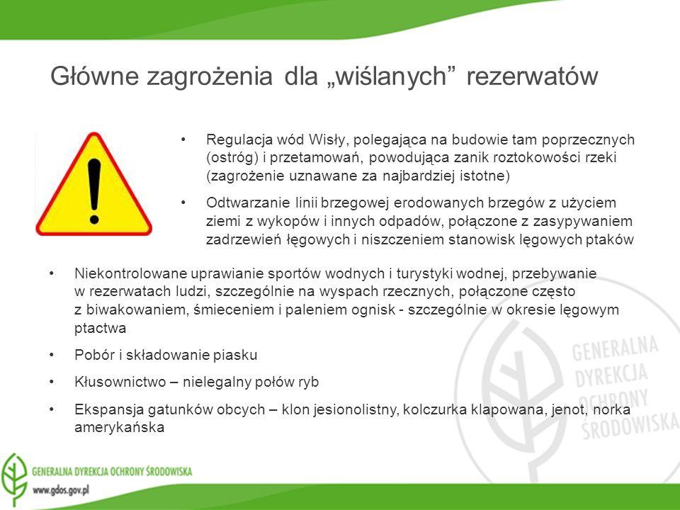 www.gdos.gov.pl Główne zagrożenia dla wiślanych rezerwatów Regulacja wód Wisły, polegająca na budowie tam poprzecznych (ostróg) i przetamowań, powoduj